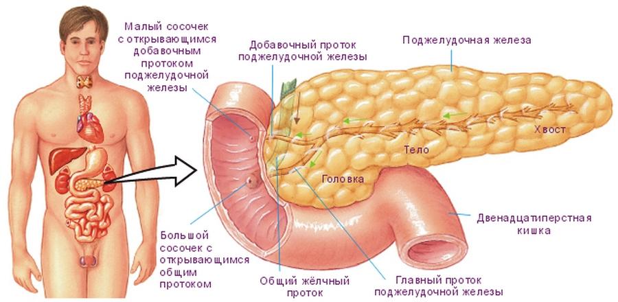 паллиативное лечение2