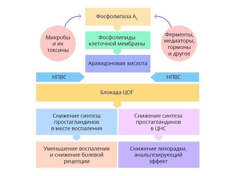 обезболивание хабр6