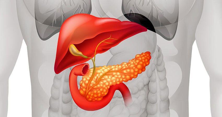 Рак поджелудочной железы лечится или нет