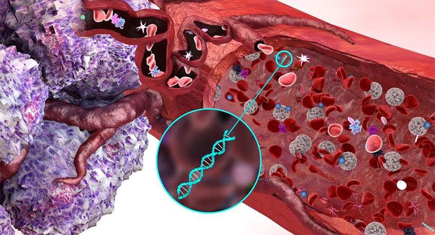 Жидкостная биопсия